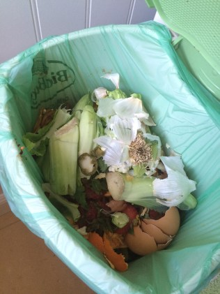 Compost Waste