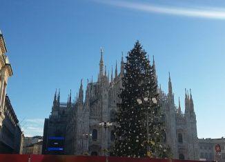Piazza Duomo ĺ'albero di Natale