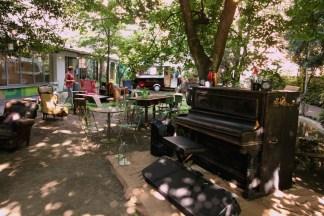 Casa-degli-artisti-parco-e-wwf-3-324x216 Il giardino segreto del WWF a Milano Ambiente