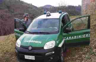 Regione-Lombardia-e-Carabinieri-Forestali-maggior-controllo-324x210 Regione Lombardia e Carabinieri Forestali maggior controllo! Ambiente