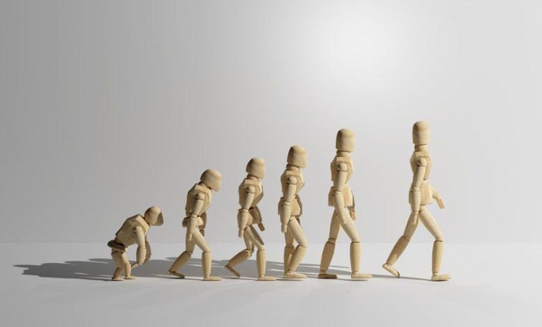 las-partes-del-cuerpo-humano-que-no-tienen-sentido-practico:-el-fascinante-mundo-de-los-vestigios-de-la-evolucion