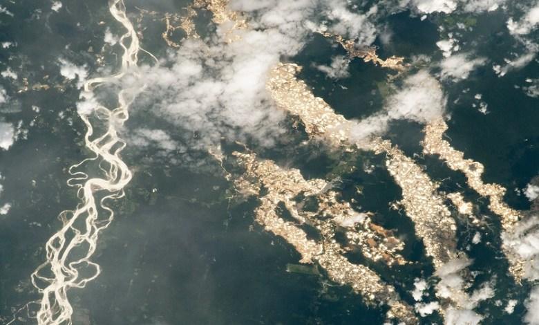 """nasa-muestra-los-""""rios-de-oro""""-en-el-amazonas-vistos-desde-el-espacio:-una-impactante-imagen-de-la-mineria-ilegal"""