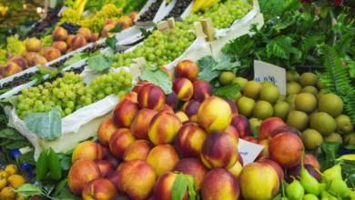 la-cantidad-exacta-de-frutas-y-verduras-que-debes-tomar-a-diario-para-vivir-mas-anos