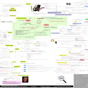 Chronic-Stable-Angina-concept-map