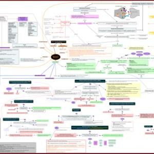 depression concept map