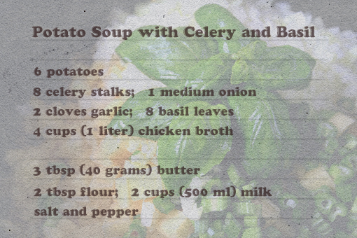 potato soup with celery and basil recipe with step-by-step images