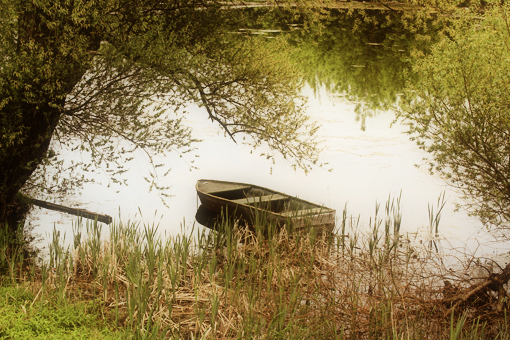 boat on the river and willow trees still life