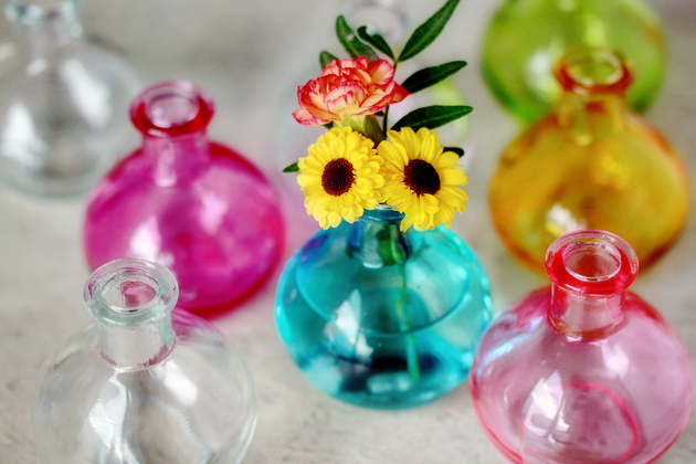 flower and colorful vases