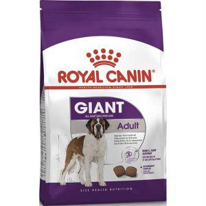 Сухой корм для собак гигантских пород Royal Canin GIANT ADULT (старше 18/24 месяцев)