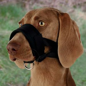 Намордник-петля для собак Trixie черный, нейлон
