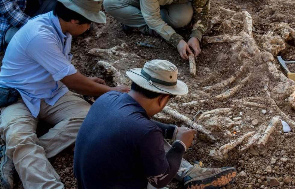 Paleontólogos recuperando esqueleto de dinosaurio en una excavación. Por paleontologist natural   Shutterstock.com