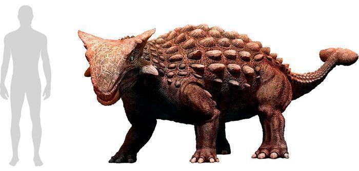Ankylosaurus (Ankylosauria). Por Warpaint   Shutterstock.com