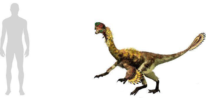 Oviraptor (Oviraptorosauria). Por Linda Bucklin
