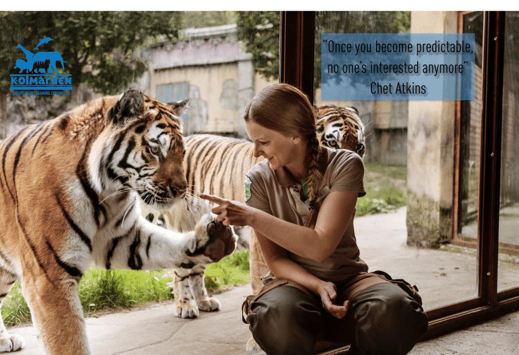 Thoughts for Behaviour: Predictability vs Unpredictability