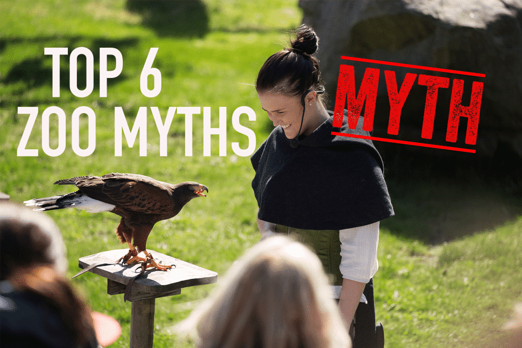 Top 6 myths about zoos