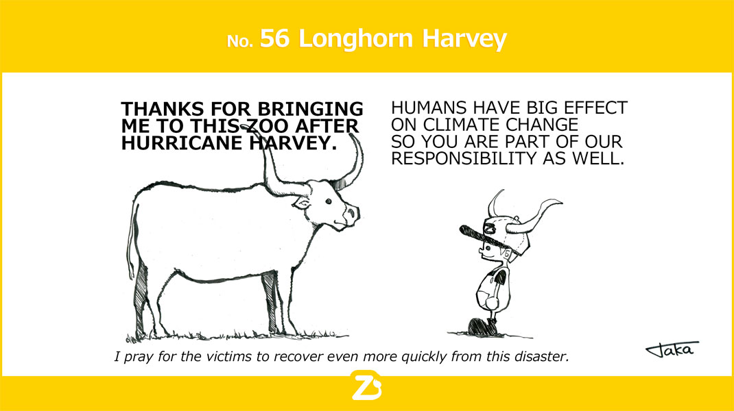 No. 56 Longhorn Harvey/ ロングホーン ハービー