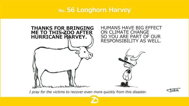 Longhorn Harvey