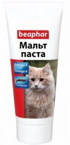 Почему кошка срыгивает пеной. Рвота у кошек и котов
