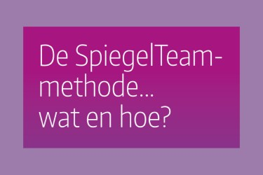 De SpiegelTeam-methode