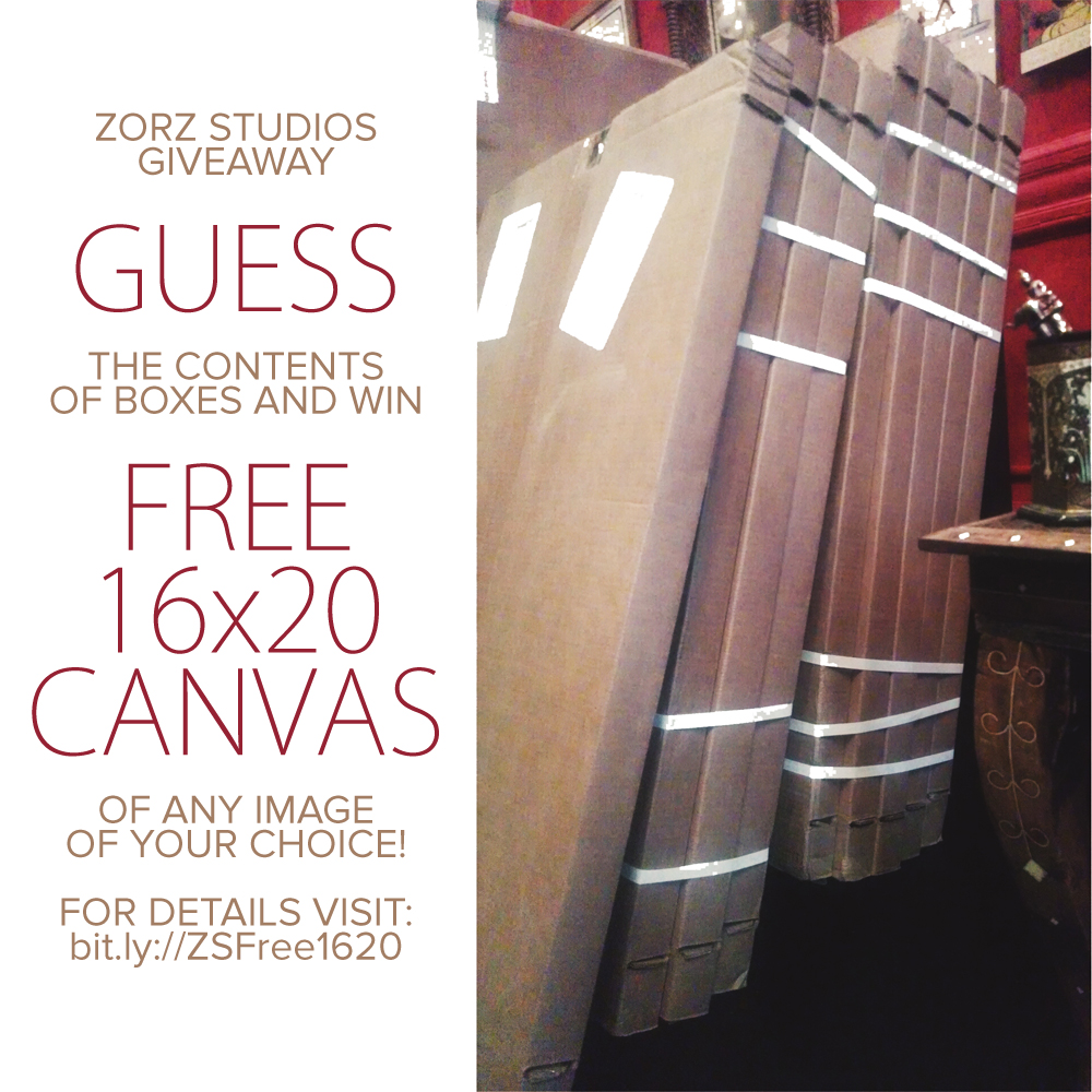 Guess and Win a Free 16x20 Canvas Print