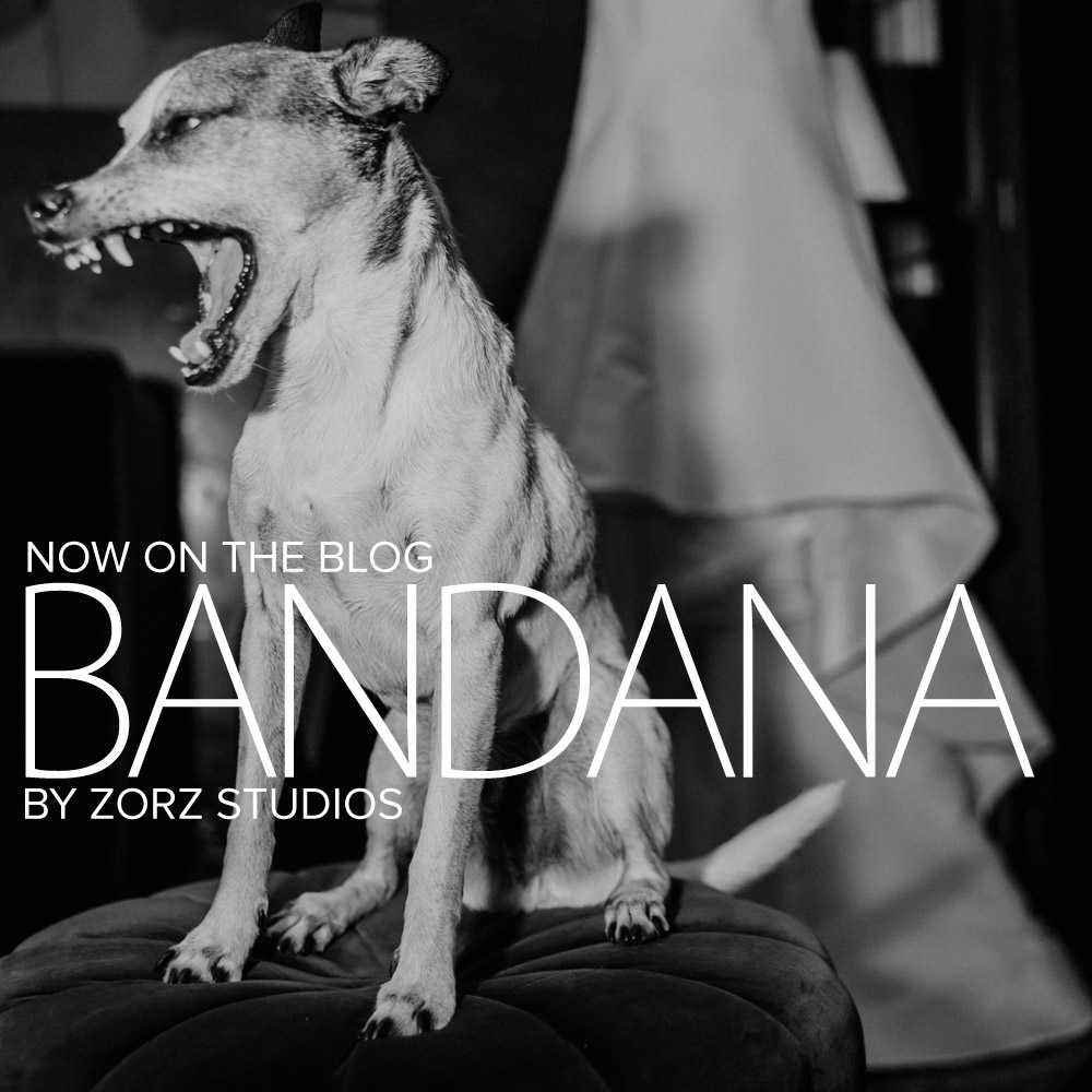Bandana: Ana + Dana = Freaking Stylish Manhattan Wedding by Zorz Studios (1)