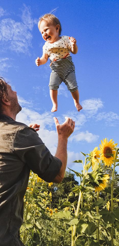 Sunmaze: My Family in Sunflowers by Zorz Studios (10)