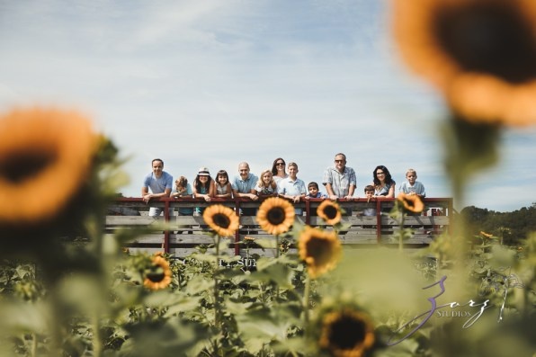 Field Trap: Sunflower Field Photoshoot for Three Families by Zorz Studios (3)