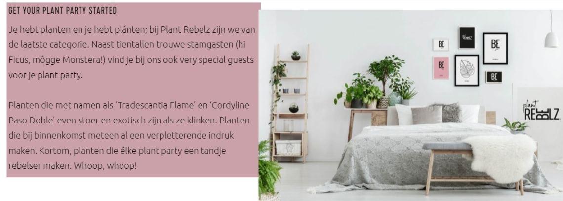 plantrebelz.nl