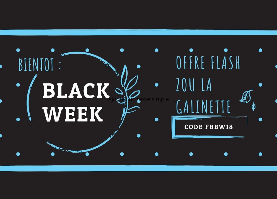 Black Friday : offres PROMO au gîte à ne pas rater !