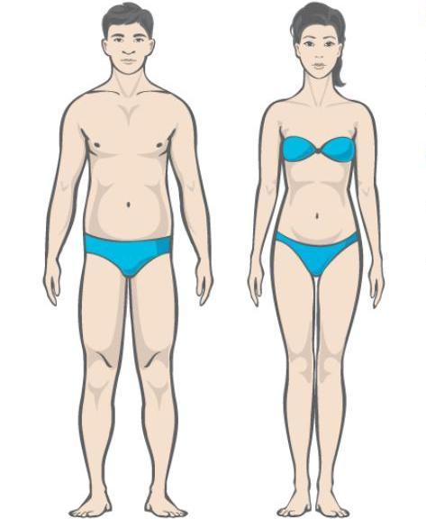 Kako se riješiti 30 kg viška kilograma. Pojačana dijeta. Put. Jabučna dijeta