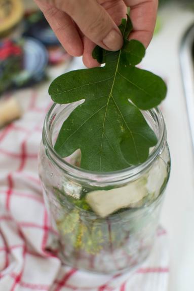 Zdjęcie - Jak przygotować kiszone ogórki na zimę? - Przepisy kulinarne ze zdjęciami