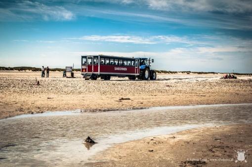 Transport między wybrzeżem a parkingiem