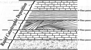 Тестування моделі послідовності катастроф шляхом пошуку слідів ґрунтоутворення або біотурбації на кожному із шарів, утворених у різних час