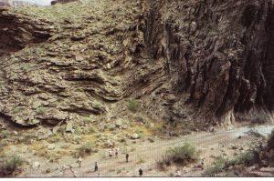 Вигин, який стався в районі Тапітс, у нижньому пласті осадових утворень Гранд-Каньйону. Взято з «Гранд-Каньйон: пам'ятник катастрофі» Д-ра Стіва Остіна