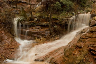 Runoff in Zion