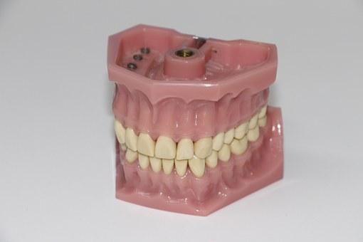 zęby, proteza, technik, dentystyczny