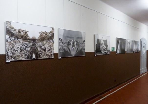 wystawy (10)
