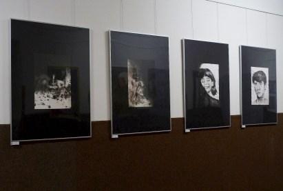 wystawy (5)