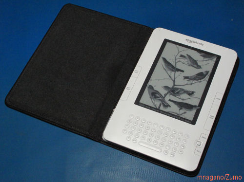 Kindle_Intro2