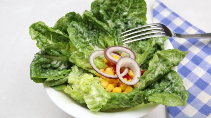 Romanasalat mit einem einfachen Senf Dressing