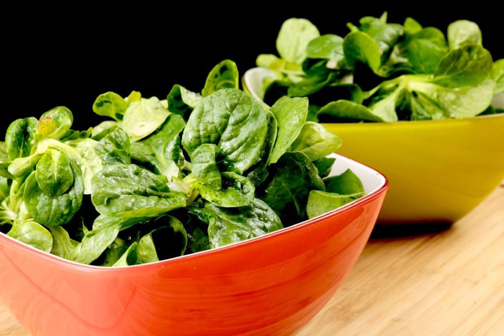 Beilagen Salat Feldsalat mit einem Honig Kräuter Dressing