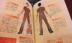 OK本筋肉図