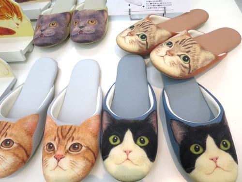 cats_slipper