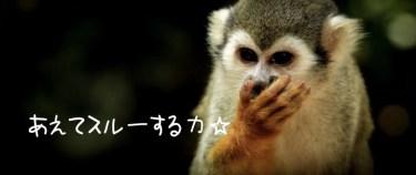 あえてスルーする力と書いた猿の写真画像