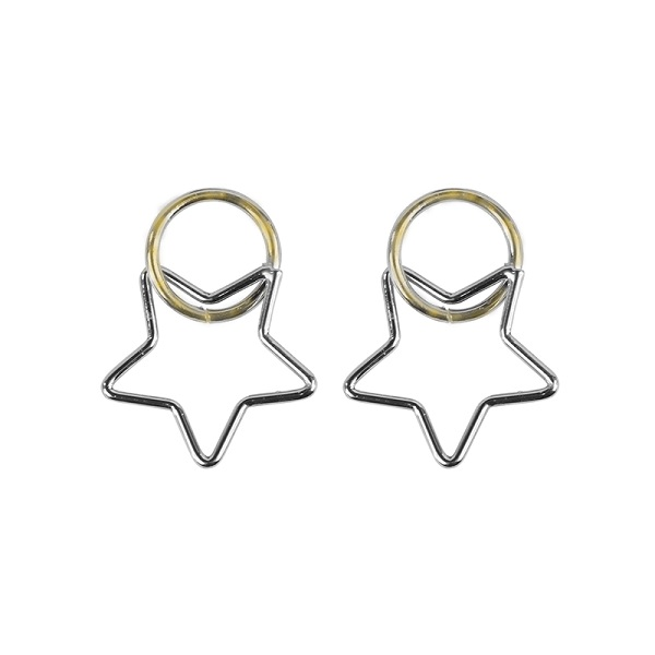 small silver star earnings