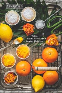 1-zitronen-orangen-wunder-muffins