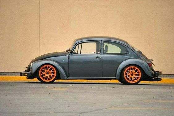 German Look Beetle - Found Image