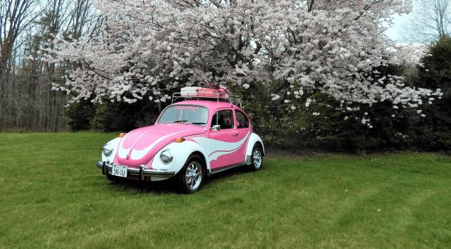 Penny Williams' 1971 Super Beetle Veronica