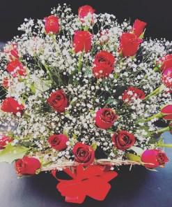 b012818f aac5 4f21 82e4 2afc117f9b43 - Red Rose Plant Basket
