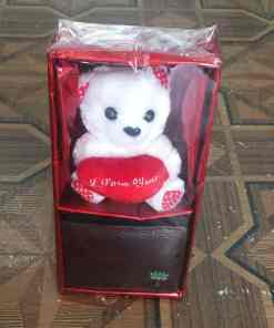 32e4ecfd b606 4670 b4d6 371ef48a9115 - TEDDY BEAR WITH WALLET FOR HIM